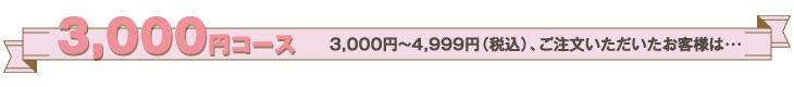 3,000円コース